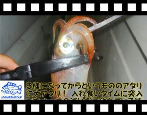 ゲーム性に中毒者続出!?日本海イカメタルゲーム!<