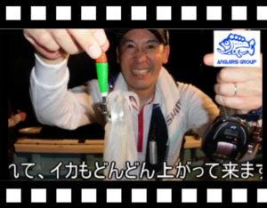 今が旬!和歌山田辺のイカメタル!<