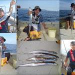 神戸沖の太刀魚テンヤ釣り