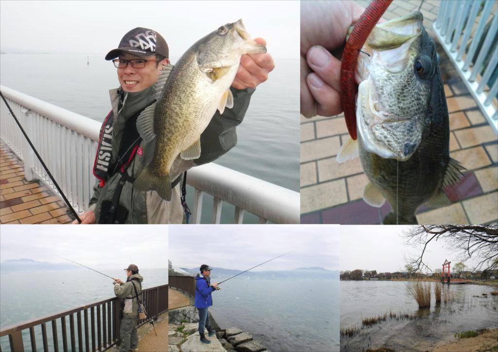 釣り 琵琶湖 情報 バス
