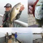 琵琶湖へオカッパリバス釣行してきました