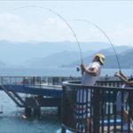 【福井】 あかぐり海釣り公園