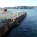 【兵庫】 海釣り公園メガフロート
