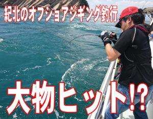 紀北のオフショアジギング釣行!<