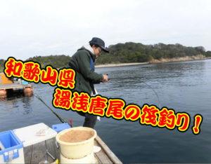和歌山県 湯浅唐尾の筏釣り!<