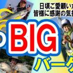 7月15日(月・祝)まで 夏のBIGバーゲン開催中!!