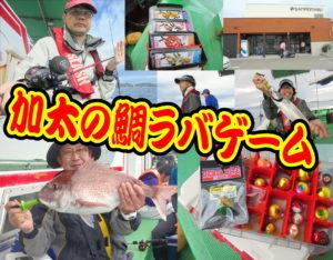 加太の鯛ラバゲーム<