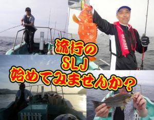 いろいろ釣れるゾ!!巷で流行のSLJ<
