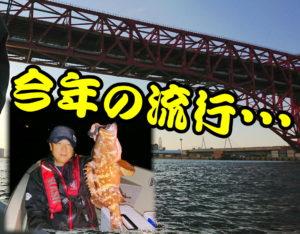 大阪湾でボートグルーパー!<