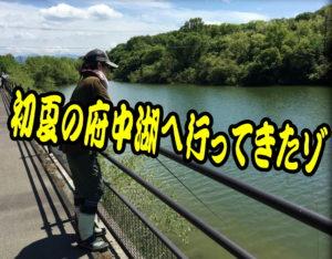 初夏の府中湖へ行ってきたゾ (府中湖、五里霧中)<