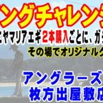 10月11日(金)エギングチャレンジイベント
