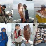 岡山県の一つテンヤ釣行