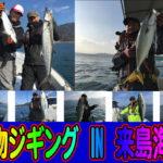 【青物ジギング釣行】IN来島海峡周辺