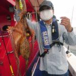良く釣れています!明石船タコ!