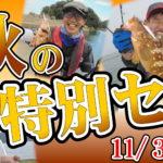 11月3日(火・祝)まで 晩秋の特別セール