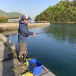田島へチヌフカセ釣りに行ってきました。