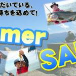 7月11日(日)まで Summer SALE